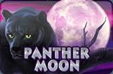 Играть в автомат Вулкан Panther Moon